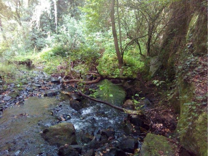 Arines Obras y Proyectos, S.L., realiza los trabajos limpieza de los ríos Sar y Sarela en su transcurrir por el Concello de Santiago