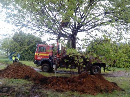 Camión grúa plantando árbol