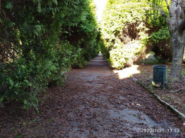 La Xunta adjudica a Arines la Obra de creación del Bosque de Camelias